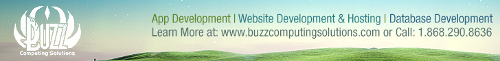 Buzz Computing Solutions